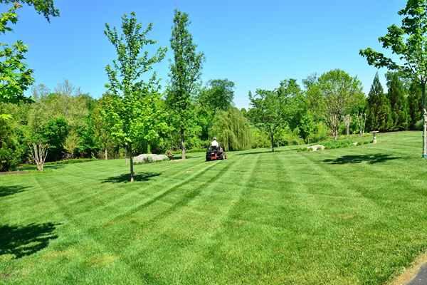 Jak przygotować miejsce pod trawnik ?