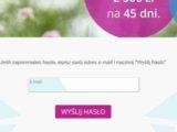 Lendon - szybka pożyczka przez internet